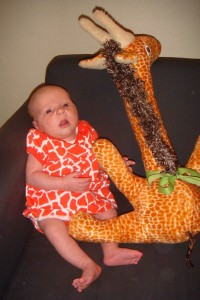 One month old girl pictured with stuffed giraffe on navy sofa