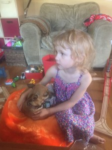 Child and dog sitting on orange Boon animal bag filled with stuffed animals
