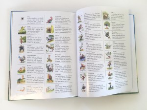 Animal encyclopedia at the end of My Very Own name alphabet animal personalized picture book