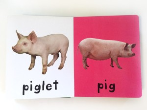 Bright Baby farm board book pig and piglet page on white and bright pink background
