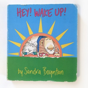 Hey Wake Up board book by Sandra Boynton