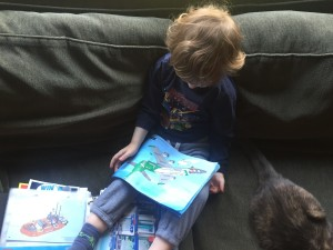 Preschooler looking at Lego instruction booklet from stored collection inside page protectors from three ring binder