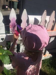 Girl spraying white picket fence with sidewalk chalk