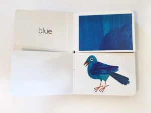 Blue bird and blue page sample from My Very First Book of Colors by Eric Carle