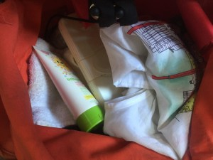 Sunscreen, cloth, wipes case, and bag stored underneath Bugaboo Frog stroller in orange