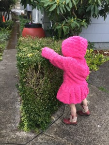 Child reaching into bush to find Easter egg