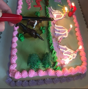 Horse themed girl's birthday cake with candles being lit with lighter