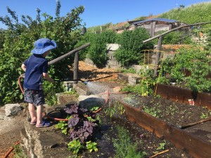 Child watering garden with hose