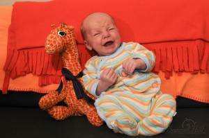Newborn infant posed on sofa with giraffe stuffed animal screaming crying
