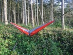 Eagles Nest Outfitters orange double hammock strung between two trees in woods with child's hand sticking out