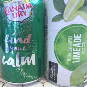 Canada Dry Ginger Ale in 12 oz can and frozen limeade concentrate in container next to each other