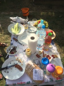 Outdoor table with remains of picnic mostly empty plates, grapes, bottles of water, cucumber cut up