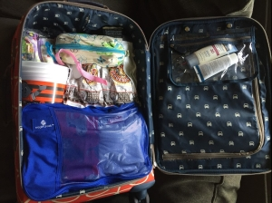 Carry on suitcase Orla Kiely packed with Eagle Creek Large pack it cube in blue and other miscellaneous items