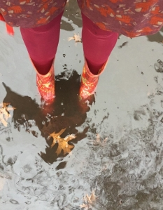 Sloggers women's waterproof rain and gardening boots in red paisley pattern submerged in puddle on sidewalk with leaves floating in it