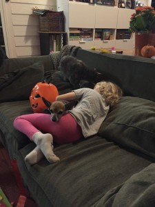 Child rolling on sofa with dog in lap and cat sleeping on cushion