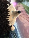 Squishables hedgehog stuffed animal looking out window of house