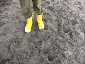 Crocs Bump It Boots in bright yellow with white toes worn by nine year old on beach in gray sand