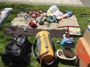 Stuff set out for donation pick up on sidewalk including pet carrier stuffed animals tricycle games costumes