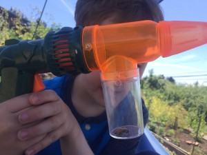 Toysmith Bug vacuum gun held by five year old with bug inside