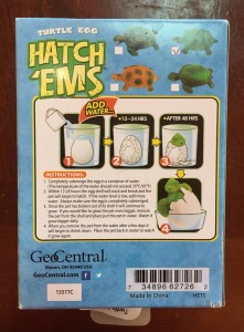 GeoCentral Hatch'ems back of box instructions for turtle type