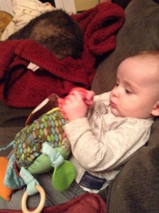 Infant playing with Skip Hop Hug and Hide Owl Toy stuffed animal