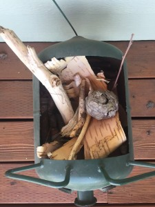 Kids' collection of sticks, bark, and more found nature items in container on front porch