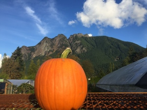 Pumpkin in front of Mt. Si Washington state