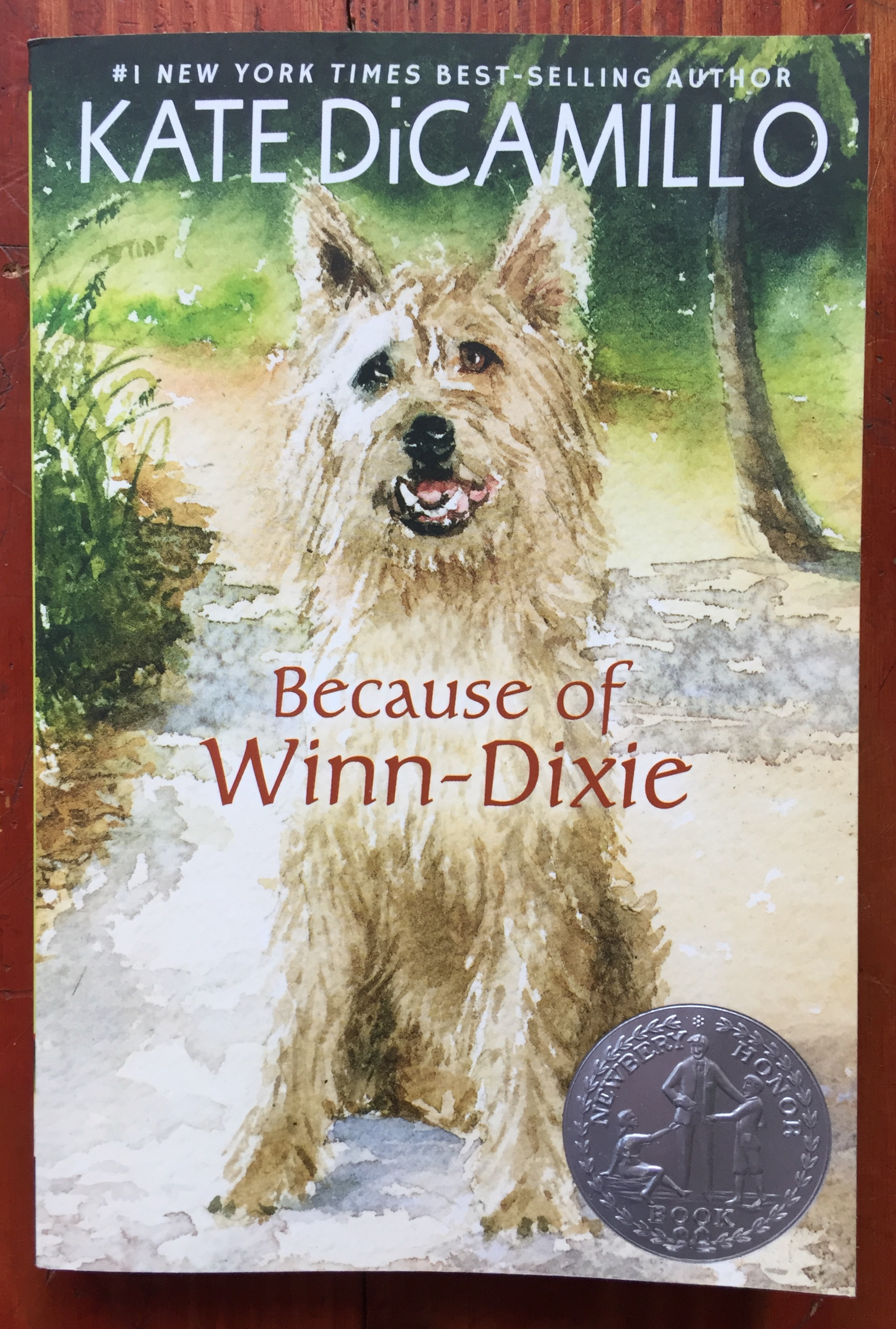 Because of Winn-Dixie kids chapter book by Kate DiCamillo