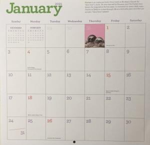 January 2021 calendar empty boxes