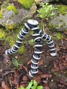 JOBY Gorilla Pod set up on uneven rocky ground