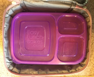 Easy Lunch Box container inside Wildkin insulated lunch bag