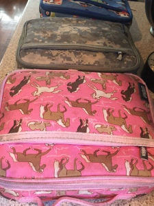 Wildkin Lunch boxes lined up in row on countertop