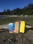 Boogie board bodyboard three lined up against log on beach