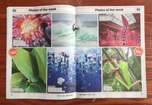 Photos of the Week from May issue of The Week Junior magazine for kids