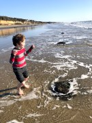 Child jumping in salt water on beach on sunny day